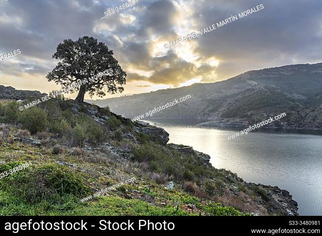 Cloudy sunrise at The Atazar reservoir in winter time. Madrid. Spain. Europe