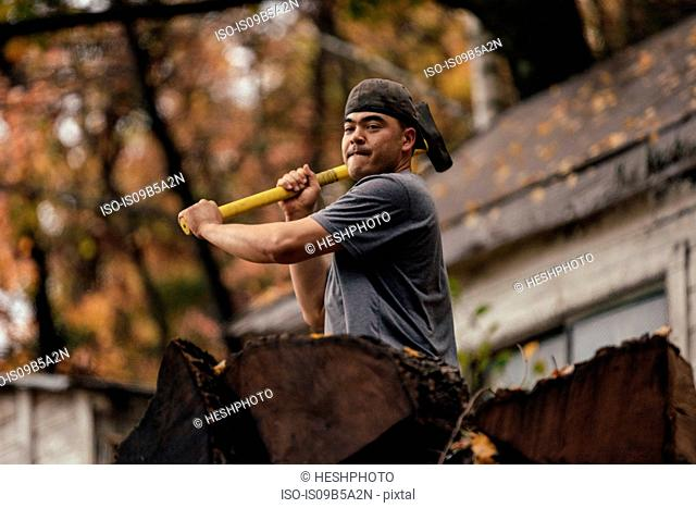 Mid adult man chopping logs in autumn forest, Upstate New York, USA