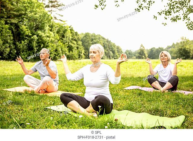 MODEL RELEASED. Three people doing yoga in field