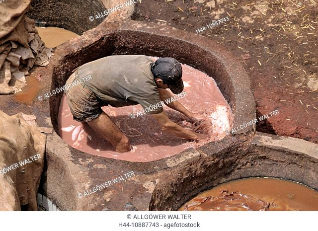 Africa, Morocco, Maghreb, North Africa, Fez, Fes, Chouara, tanner, tanning, dyer, craft, colorfully, leather, tannic acids, environment, lye, worker, injurious