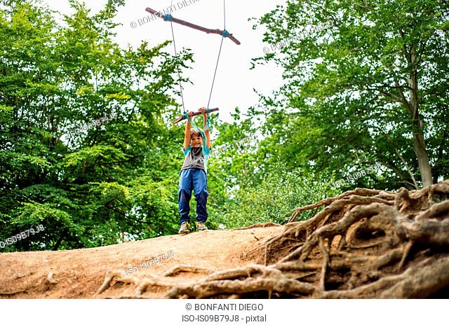 Young boy swinging on home-made tree swing