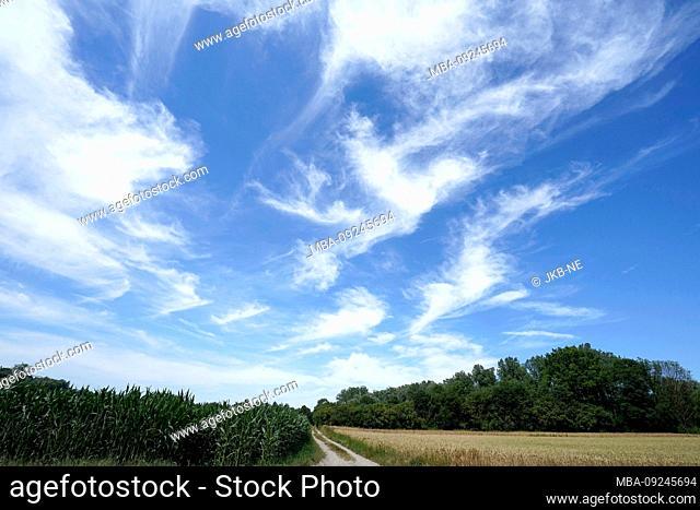 Germany, Bavaria, Upper Bavaria, Cirrurswolken, cultural landscape