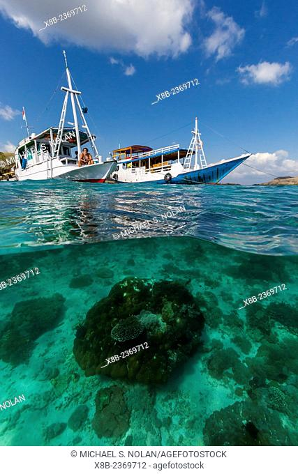 Local tourist boats anchored over underwater reef system on pink sand beach, Komodo National Park, Komodo Island, Indonesia
