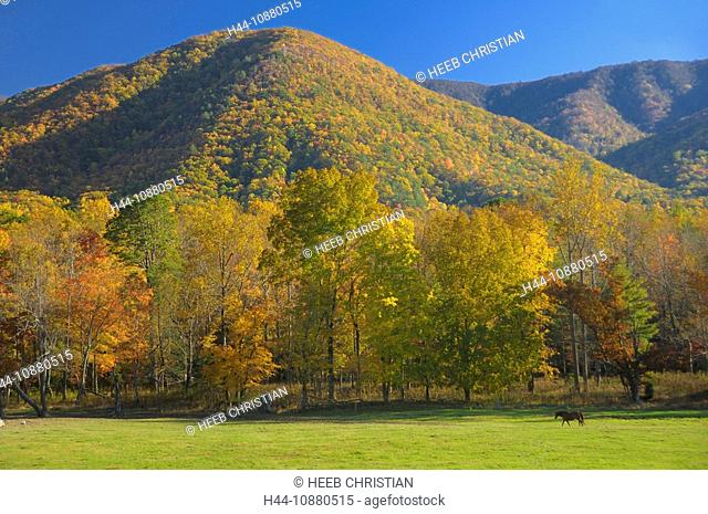 Cades Cove, Fall, colours, colors, Great Smoky Mountains National Park, Tennessee, USA