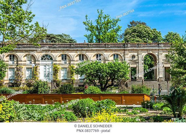 France, Gironde, Bordeaux, Galerie des anciennes serres of the Jardin Public