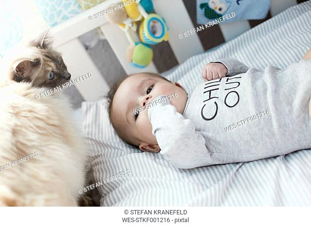 Baby lying in crib with cat