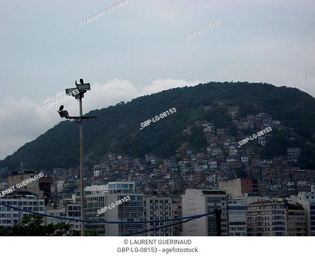 Slums, hill, City, Rio de Janeiro, Brazil