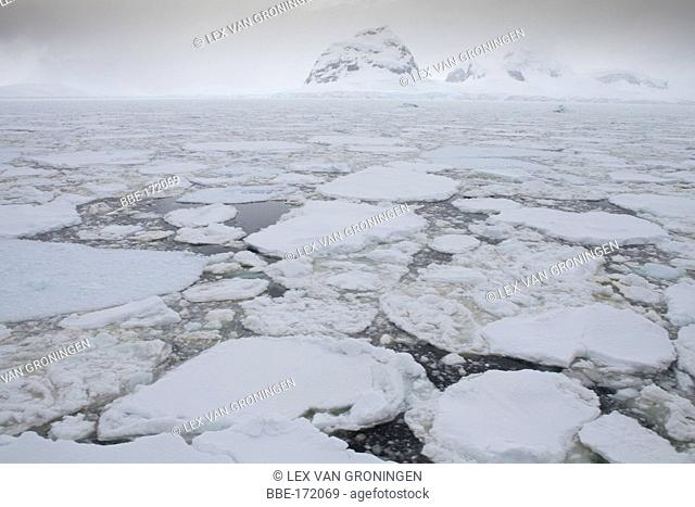 The amount of sea ice in this area was quite unusual for this time of the year in Butler Passage (Antarctic Peninsula)