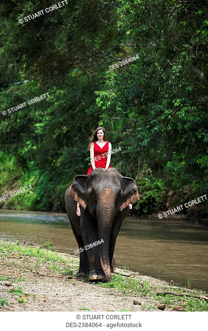 Girl riding an elephant; Chiang Mai, Thailand
