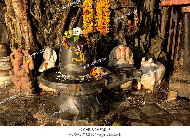 Shiva Lingam shrine at Rishikesh, Uttarakhand, India
