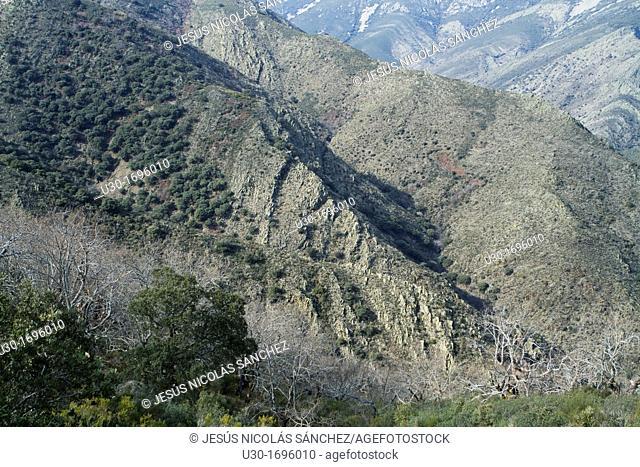 Quilamas valley, belonging to Biosphere Reserve of Sierra de Béjar and Francia  Salamanca province  Castilla y León  Spain