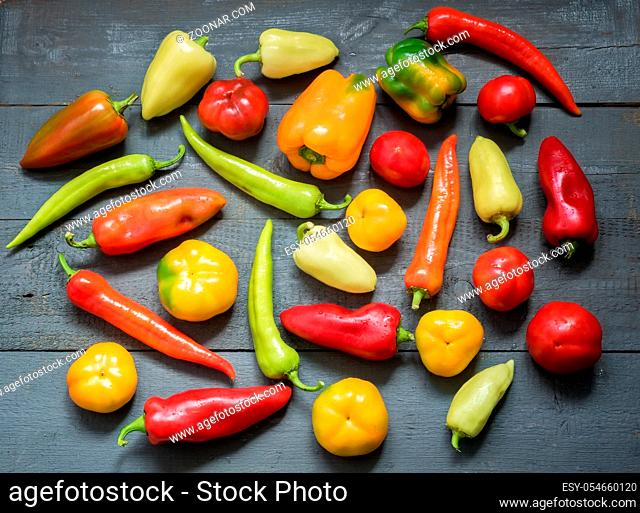 On the painted wooden background of a variety of color and shape of the fruits of bell peppers of different varieties. Top view, negative space