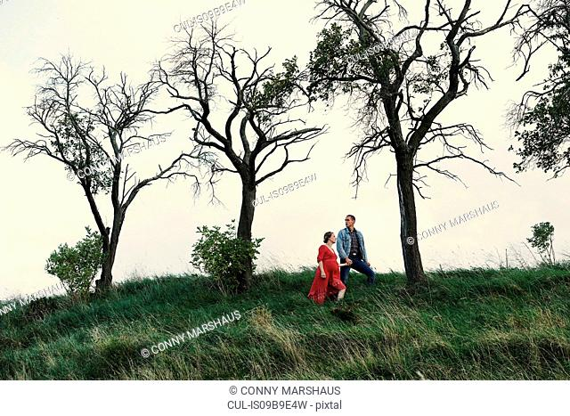 Pregnant couple hand in hand on hillside