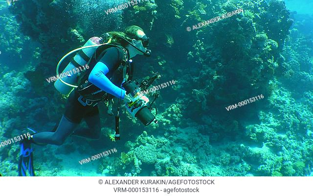 Underwater photographer with a camera swims along the wall of a coral reef, an medium shot