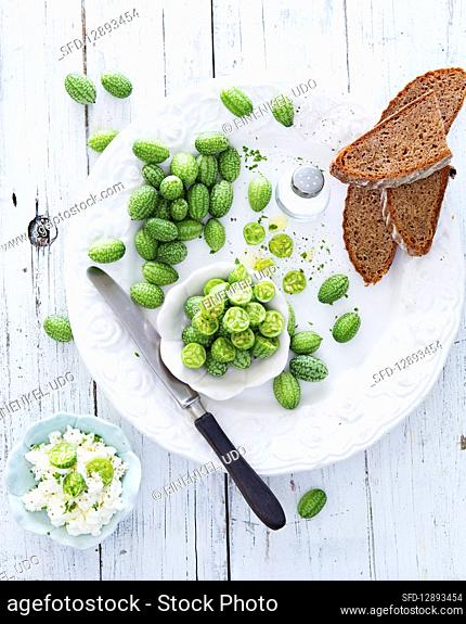Mini Mexican gherkins with cottage cheese and bread