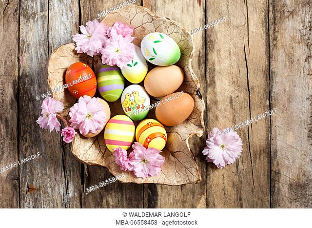 Bowl with Easter eggs and cherry flowers on wooden ground