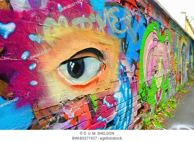 painted eye on a graffiti wall , Germany, Bavaria, Stein
