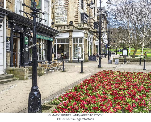 Spring Flowers in The Montpellier Quarter at Harrogate North Yorkshire England