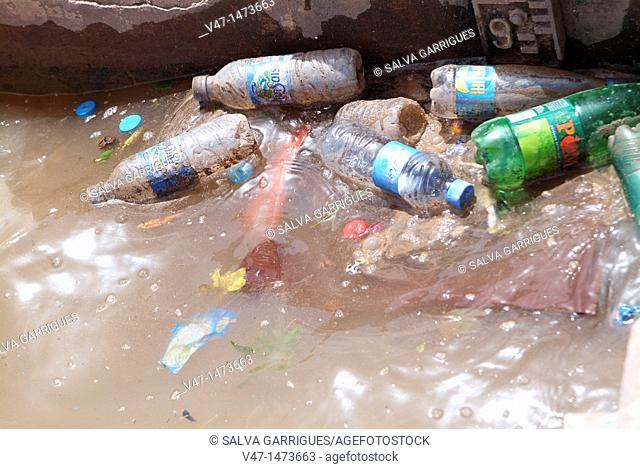 trash in the pool in the gardens of Menara, Marrakech, Morocco
