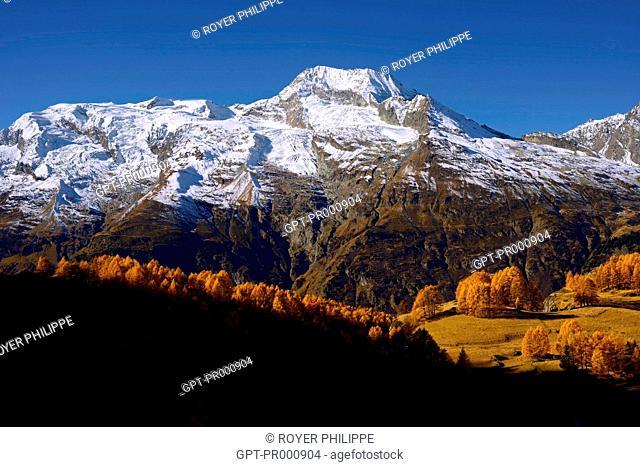 LE MONT POURRI VU DE LA COMMUNE DE SAINTE FOY TARENTAISE, (73) SAVOIE, RHONE ALPES, FRANCE