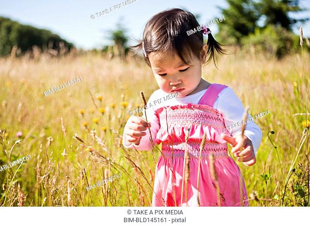 Curious Chinese girl looking at flower
