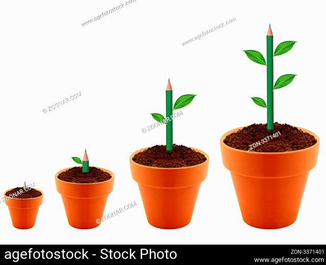 Green Plant growing in four levels in clay garding pot