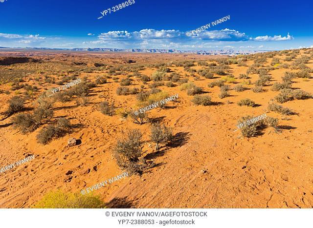 Arizona Desert Near Horseshoe Bend