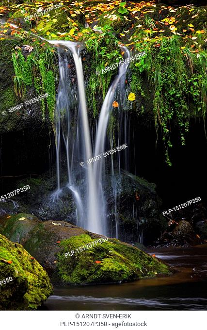 Waterfall on the Große Ohe river which flows through the Steinklamm valley, Bavarian Forest National Park, Bavaria, Germany