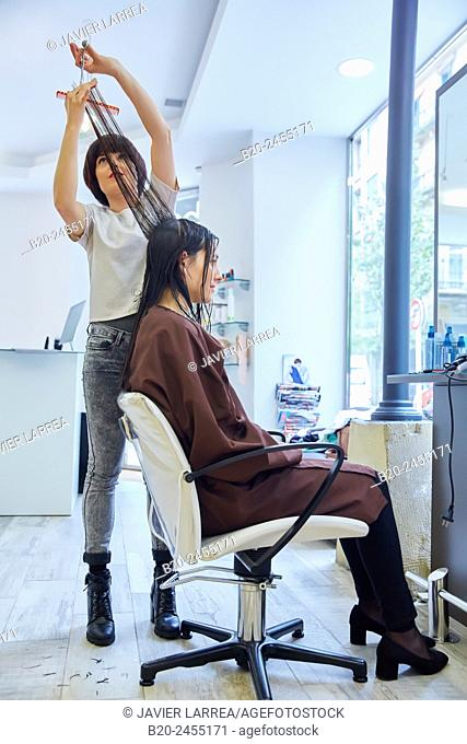 Hairdresser cutting customer's hair. Hairdressing salon and Beauty Clinic