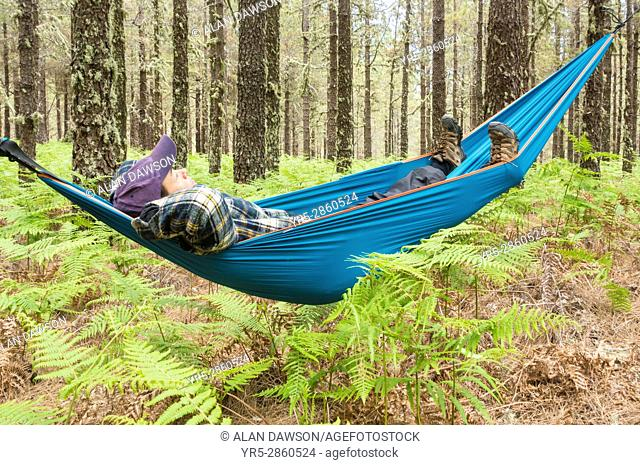 Mature male hiker relaxing in hammock in forest