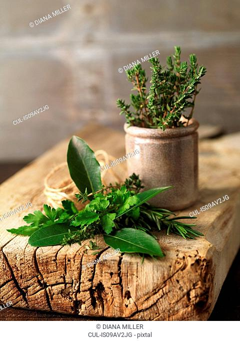 Variety of fresh herbs and jar on rustic wood