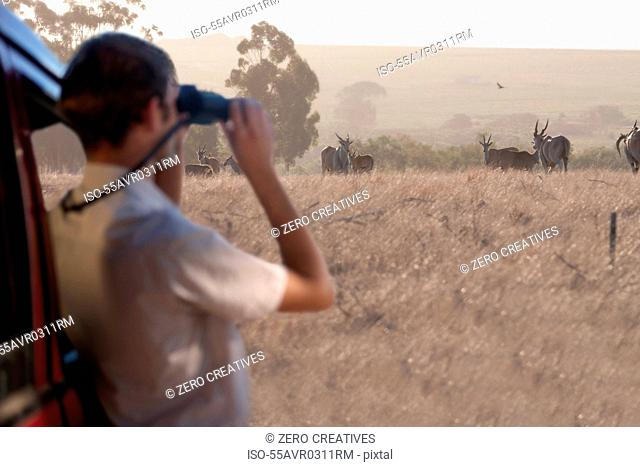 Young man watching wildlife through binoculars, Stellenbosch, South Africa