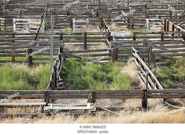 Abandoned stockyard