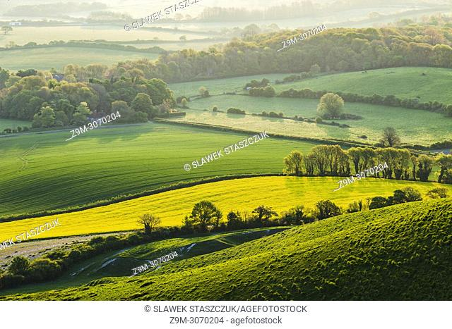 Spring morning in South Downs National Park, East Sussex, England