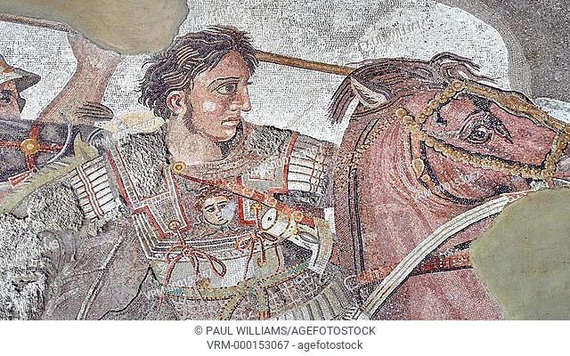 Alexander the Great from the Roman mosaic of Battle beween Alexander the Great and Persian King Darius, 120-125 BC, Casa del Fauno, Pompeii, inv 10020
