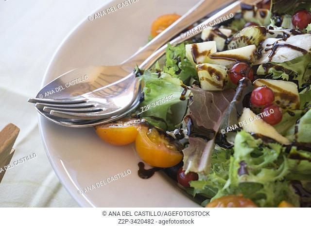 Fresh salad with modena vinegar