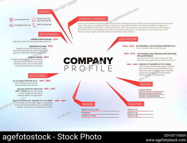 Vector Company infographic overview design template with red labels and photo placeholder in the background