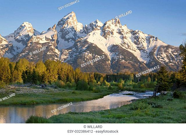Grand Teton mountains with stream and trees in the foreground captured in morning light