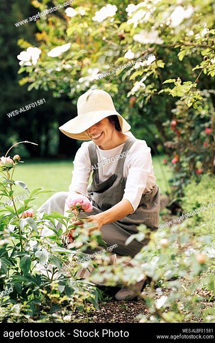 Woman smiling while picking rose flower in garden