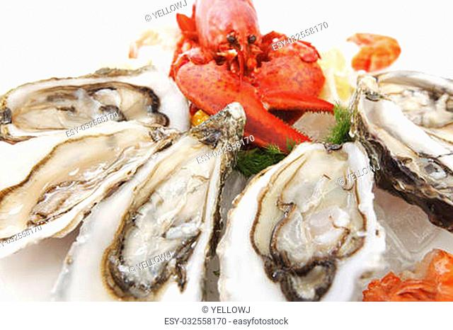 Various fresh seafood on white background