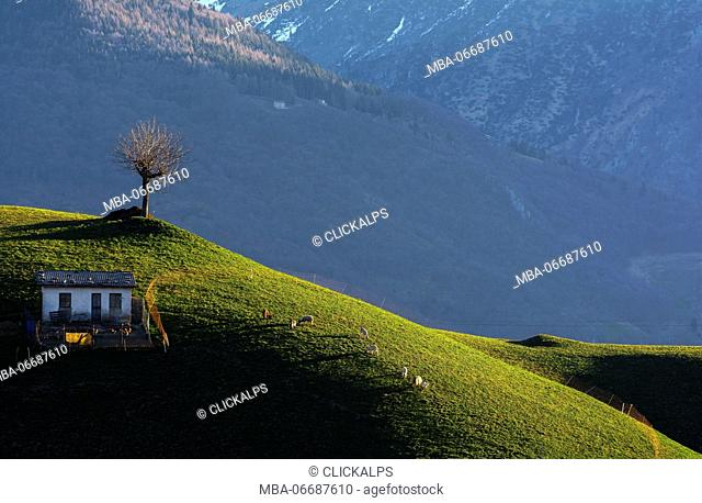 A natural picture, in Val Serina, province of Bergamo, a place 'of absolute peace and tranquility