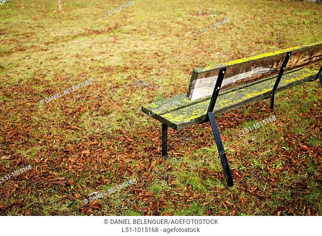 Bench on a park in Pradillo, Sierra de Cameros, La Rioja