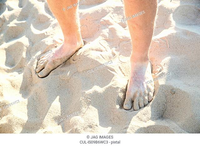 Bare feet and ankles of young man standing on dry sandy beach