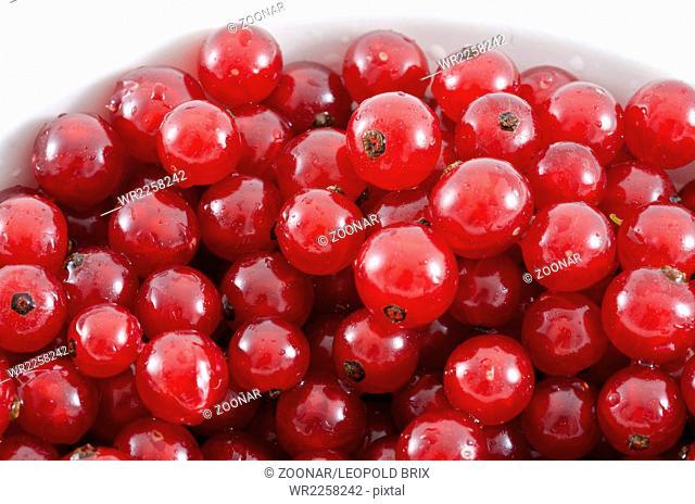 washed and destemmed redcurrants