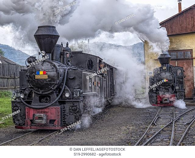Carpathian Forest Steam Train. Romania