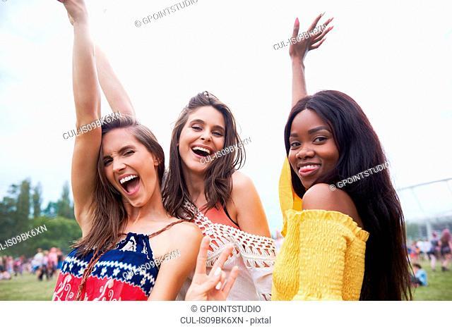 Friends posing in music festival