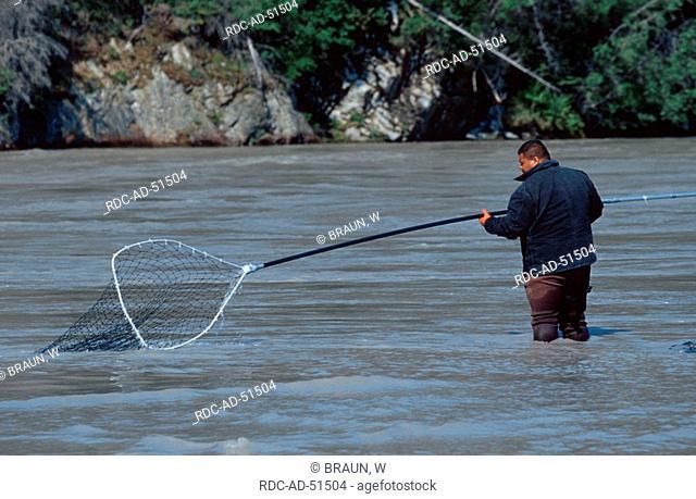 Salmon angler at Copper River Alaska USA