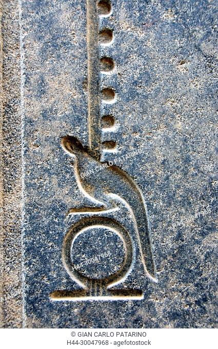 Luxor, Egypt. Temple of Luxor (Ipet resyt): the hieroglyph means eternity