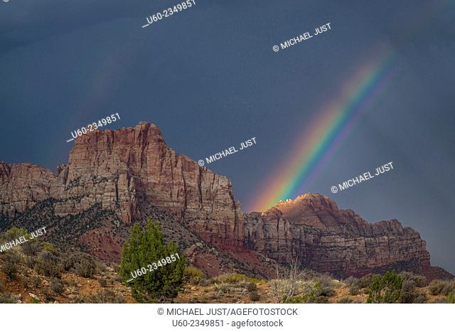 A storm passes through Zion Canyon during sunset producing a rainbow at Zion National Park, Utah