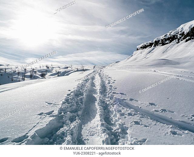 Ski traces in the snow, Alpe Devero, Piedmont, Italy